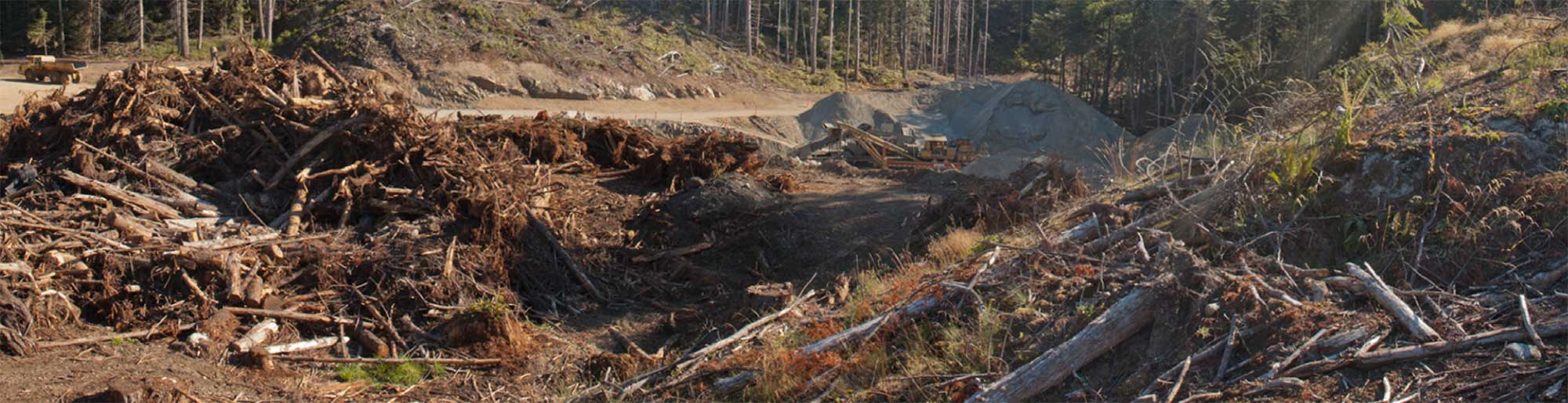 A wide stretch of piles of broken branches, disturbed dirt and rocks - the result of typical BC logging